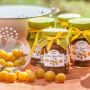 Mirabellen-Mango-Chutney (400 ml)